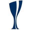 Logo for pokalturnering.dk