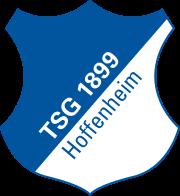 Logo for Hoffenheim