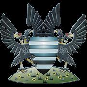 Logo for Salisbury City