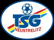 Logo for TSG Neustrelitz