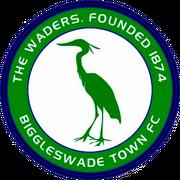 Logo for Biggleswade Town