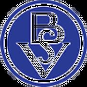 Logo for Bremer SV