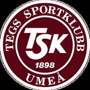 Logo for Team TG FF