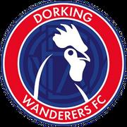 Logo for Dorking Wanderers