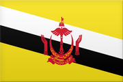 Logo for Brunei