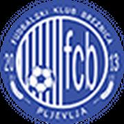 Breznica (k) logo