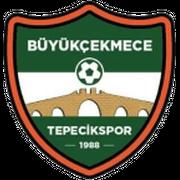 Buyukcekmece Tepecikspor logo
