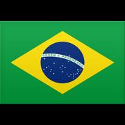 Brasilien logo