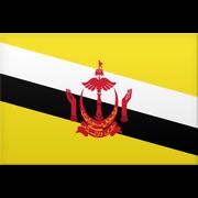 Brunei U23 logo