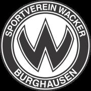 Burghausen logo